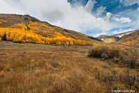 History of the Golden Age By the third week of September the Aspen at the