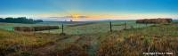 Blue Morning Meadow As the sun rises the morning mist gradually dissipates revealing